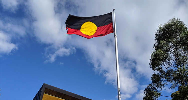 The Aboriginal flag is raised on the UNSW Kensington campus