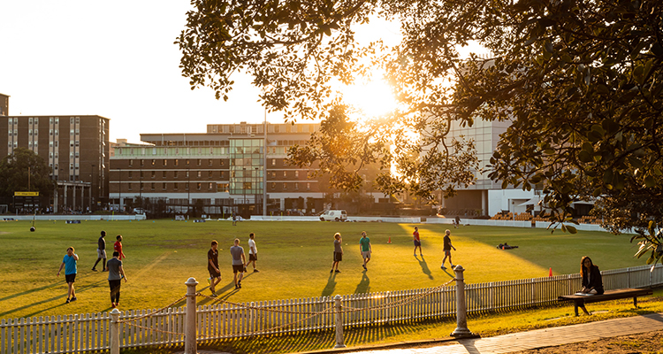 UNSW Village Green at sunset