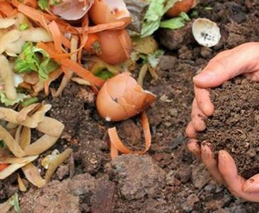 food waste turning to compost